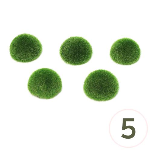 반원*잔디폼 6.5cm (5개입)