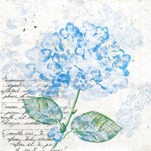 (냅스) 1566 수입냅킨 33*33cm 13309741  FLOU D'HORTENSIA BLUE