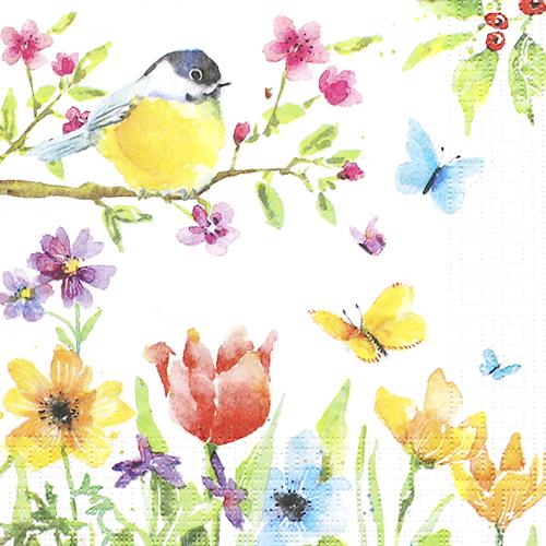 (냅스) 997 수입냅킨 33*33cm 1332784  Spring Bird