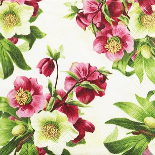 (냅스) 559 수입냅킨 33*33cm 200391  Easter rose