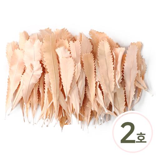 프리저브드 잎사귀 2호*살구 약40g (70~80개입) Z-01-428