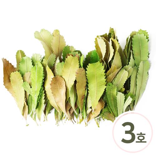 프리저브드 잎사귀 3호*연두 약40g (70~80개입) Z-01-429