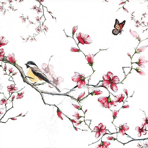 (냅스) 1028 수입냅킨 33*33cm BIRD & BLOSSOM WHITE