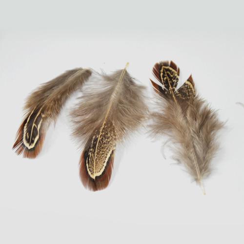 깃털 소 *야생깃털* (50개입) O-07-204
